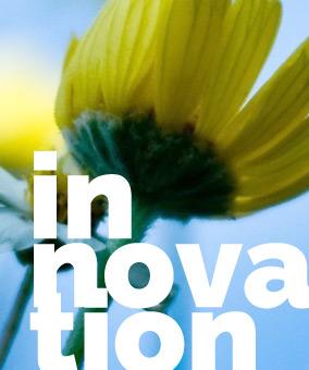 L'innovation sociale dans le milieu communautaire des aînés