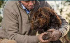 Companion Animals & the Health of Older Persons
